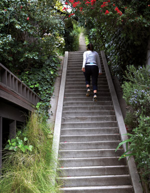 Captivating Stair Walks: Rustic Canyon