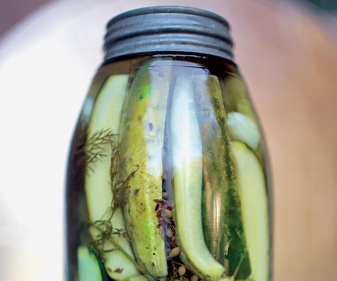 pickles-image