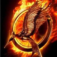catchingfire200