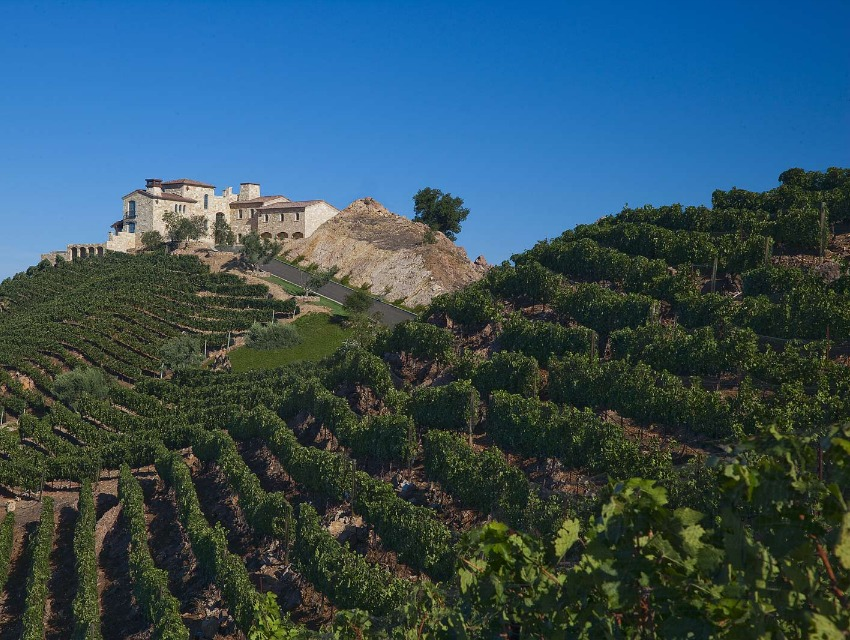 Malibu_Vineyards_850