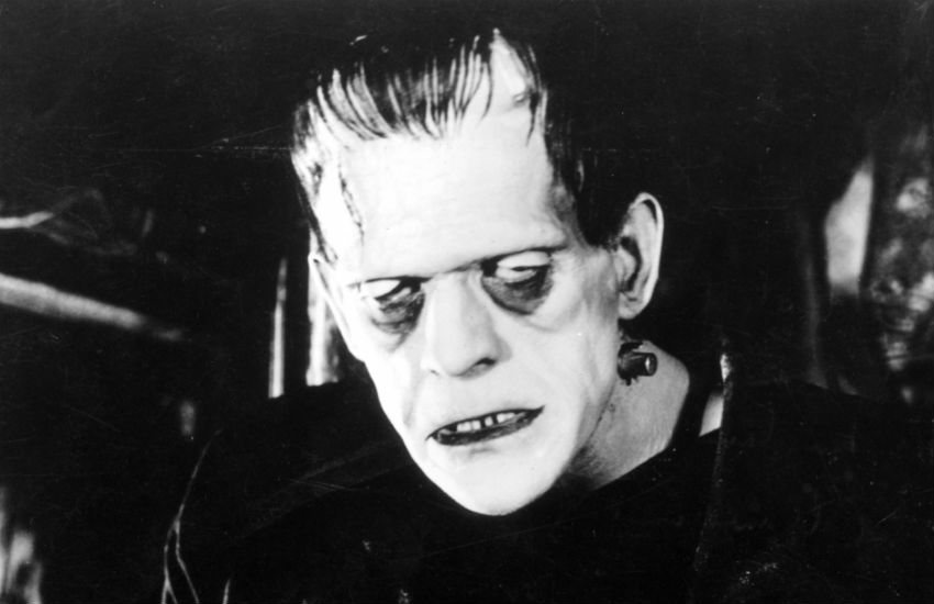 frankenstein s monster essays Open document below is a free excerpt of frankenstein persuasive essay - was he a victim of the monster  from anti essays, your source for free research papers, essays, and term paper examples.