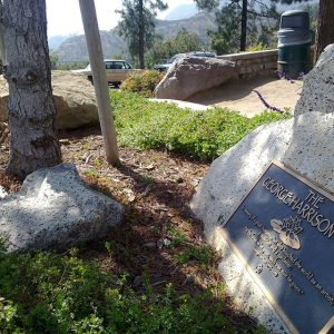George Harrison's Memorial in Griffith Park in 2010