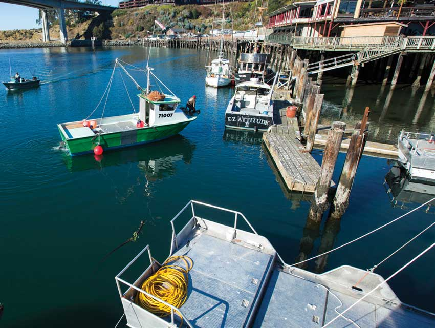 The weekender mendocino los angeles magazine for Fort bragg fishing charters