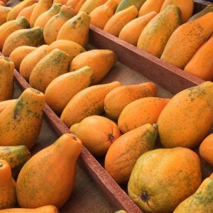 These papayas are grown in Carpinteria.