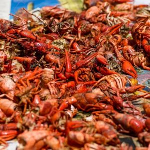 Gator by the Bay features crawfish trucked in from Louisiana.