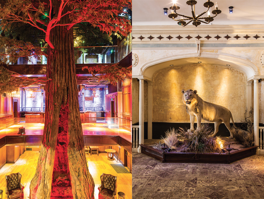From left: A fireplace burns inside the 40-foot artificial redwood tree that anchors the four-story atrium at Clifton's cafeteria. The taxidermy lion is one of several wildlife conservation dioramas assembled in collaboration with L.A.'s Natural History Museum