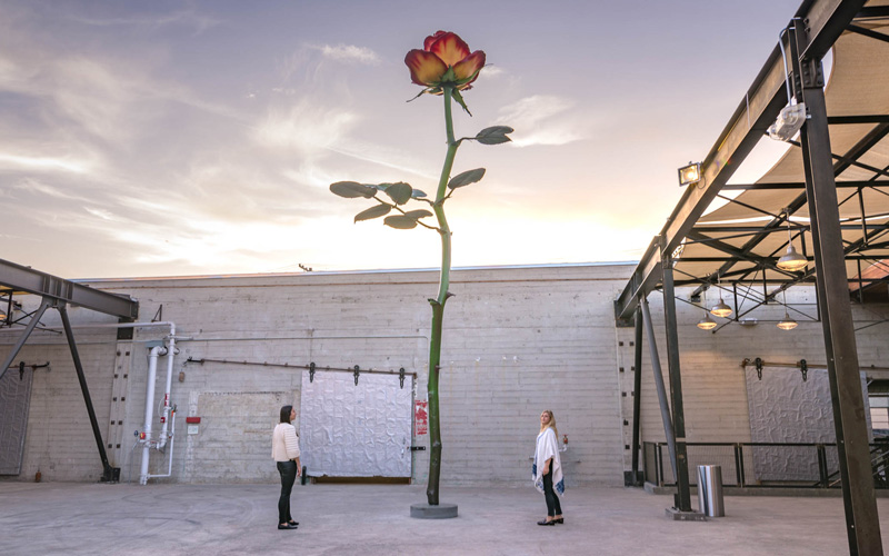 Here\'s the Deal with the 30-Foot-Tall Rose Towering Over the Arts ...