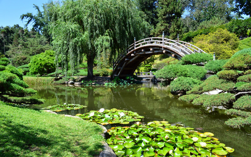 Where to Find L.A.\'s Most Exquisite Japanese Gardens Los Angeles ...