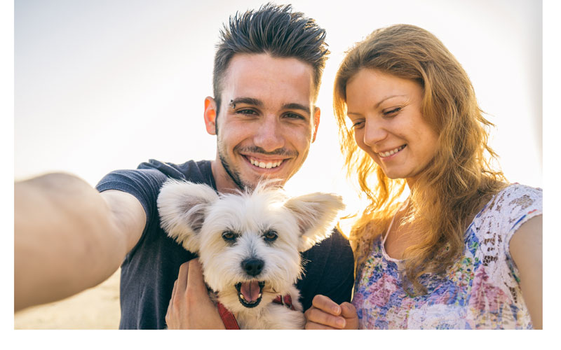 essays about having pets Essay: benefits of owning a pet topics having a pet often provides people with a reason for enjoying life and connecting with others.