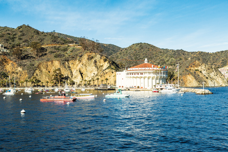 Can You Take Your Car To Catalina Island